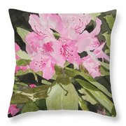 Spring At The Cabin Throw Pillow