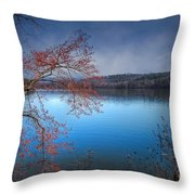 Spring At The Lake Throw Pillow