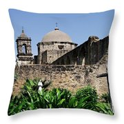 Spring At The Mission Throw Pillow