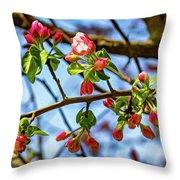 Spring Awakening 3 - Paint Throw Pillow