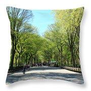 Spring Awakening Throw Pillow
