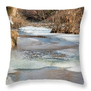Spring Awakening Throw Pillow