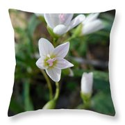 Spring Beauties Throw Pillow