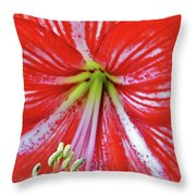 Spring Beauty Throw Pillow