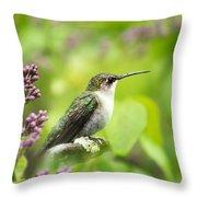 Spring Beauty Hummingbird Square Throw Pillow