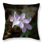 Spring Beauty Macro Throw Pillow