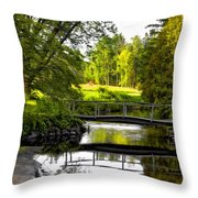 Spring Becomes The Summer Throw Pillow