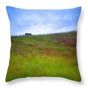Spring Bench Throw Pillow