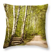 Spring Birches Woods Footpath Throw Pillow