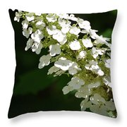 Spring Bloomers 2 Throw Pillow