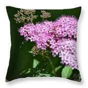 Spring Bloomers  Throw Pillow