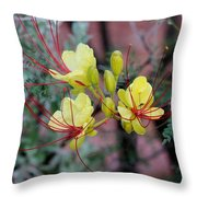 Spring Blooms Yellow Red 052814a Throw Pillow