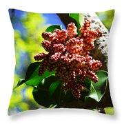Spring Blossom 1 Throw Pillow