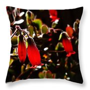 Spring Blossom 14 Throw Pillow