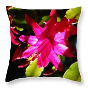 Spring Blossom 15 Throw Pillow