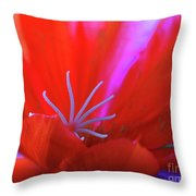 Spring Blossom 8 Throw Pillow