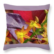 Spring Blossoms 2 Throw Pillow