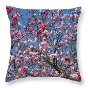 Spring Blossoms Against Blue Sky Throw Pillow