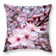 Spring Blossoms Art  Pink Tree Blossom Baslee Troutman Throw Pillow