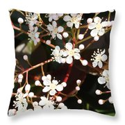 Spring Blossoms Macro Throw Pillow