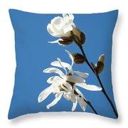 Spring Blue Sky Floral Art Print White Magnolia Tree Baslee Troutman Throw Pillow
