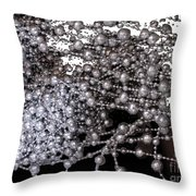 Spring Breakup Throw Pillow