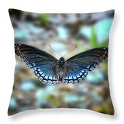 White Admiral Or Red-spotted Purple Throw Pillow