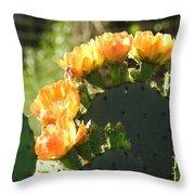 Spring Cactus 14 Throw Pillow