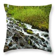 Spring Cascades Throw Pillow by Mike  Dawson