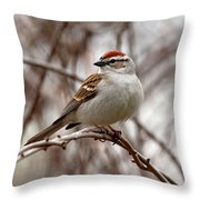 Spring Chipping Sparrow Throw Pillow