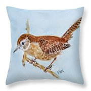 Spring Cleaning Throw Pillow