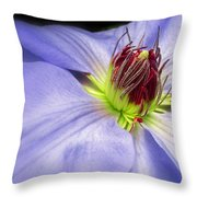 Spring Clematis Throw Pillow