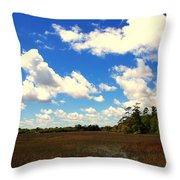 Spring Clouds Over The Marsh Throw Pillow