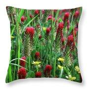 Spring Clover Throw Pillow
