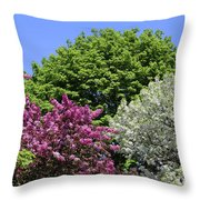 Spring Color 2 051818 Throw Pillow
