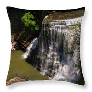 Spring Color At Burgess Lower Falls Throw Pillow