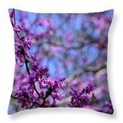 Spring Color Pop Throw Pillow