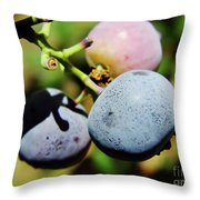 Spring - Colors - Blueberries Throw Pillow