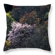 Spring Colors On The Parkway Throw Pillow