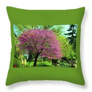 Spring Contrasts At Joslyn Castle Omaha Throw Pillow