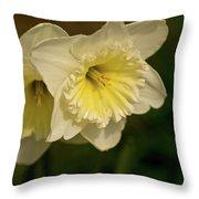 Spring Couple Throw Pillow