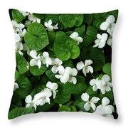 Spring Cover Throw Pillow