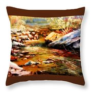 Spring Creek Glow Throw Pillow