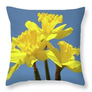 Spring Daffodil Flowers Art Prints Canvas Framed Baslee Troutman Throw Pillow