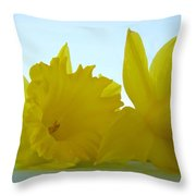 Spring Daffodils Flowers Art Prints Blue Skies Throw Pillow