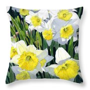 Spring- Daffodils Throw Pillow