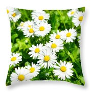 Spring Daisy In The Meadow Throw Pillow