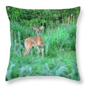 Spring Deer Throw Pillow