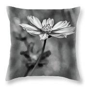 Spring Desires 2 Bw Throw Pillow