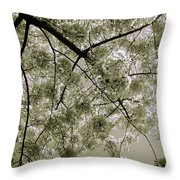 Spring Display Throw Pillow